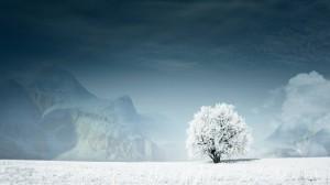 Bansko Snowbreak